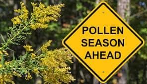 Achoo! 3 Worst Connecticut Cities, This Allergy Season